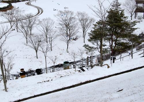 1-14.01.24 当日の積雪-2.jpg