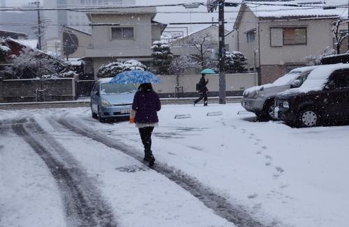 1-14.02.14 積雪-1.jpg