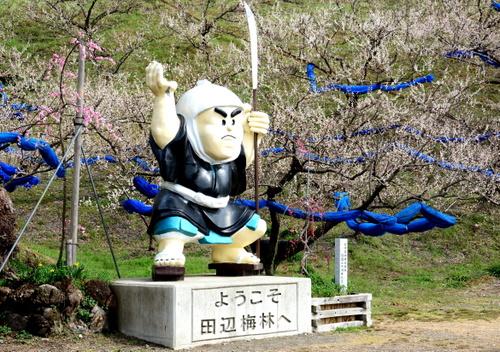 1-14.03.05 田辺梅林-1.jpg
