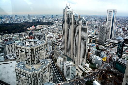 1-14.03.20 東京都庁舎展望室より.jpg