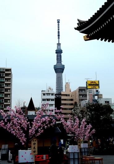 1-14.03.20 浅草寺からスカイツリー.jpg