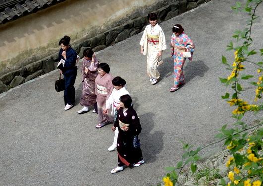 1-14.04.12 ヤマブキ-4.jpg