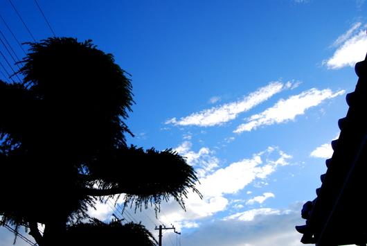 1-14.07.10 18時の青空-1.jpg