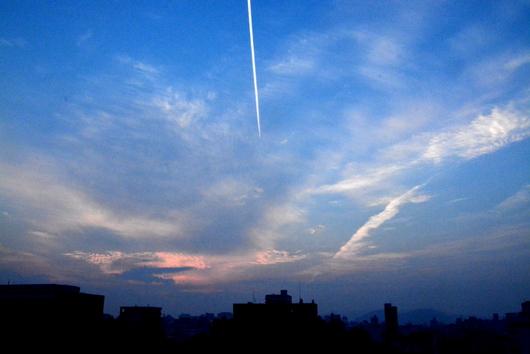 1-14.07.22 早朝散歩-1.jpg