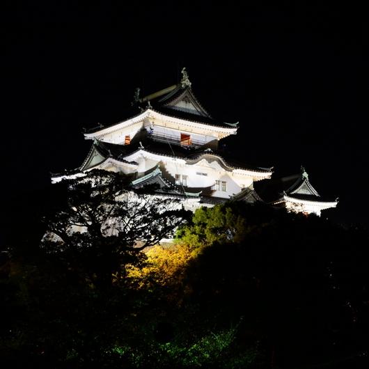 1-14.10.20 竹灯夜-10.jpg
