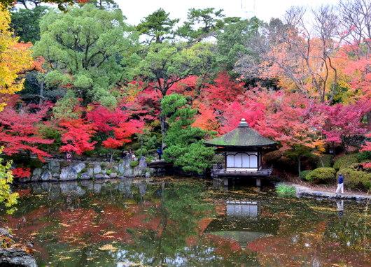 1-14.11.28 紅葉渓庭園-1.jpg