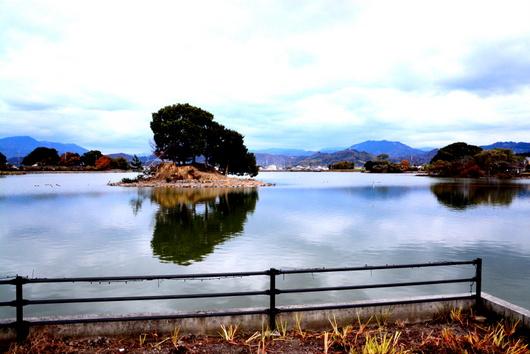 1-14.12.09 平池イルミネーション-10.jpg
