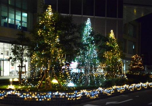 1-14.12.27 日赤イルミネーション-1.jpg