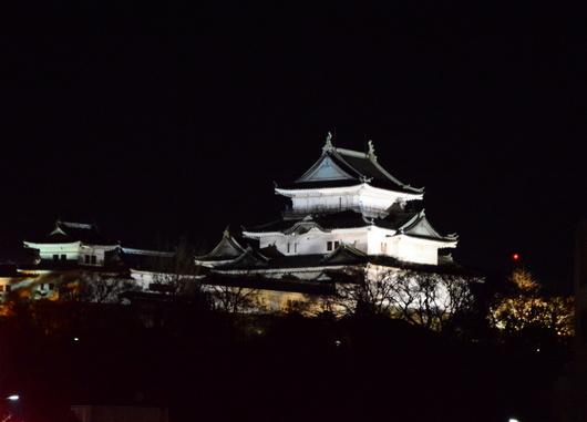 1-14.12.27 日赤イルミネーション-9.jpg