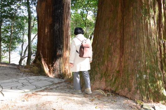 1-15.02.28 熊野古道-15.jpg