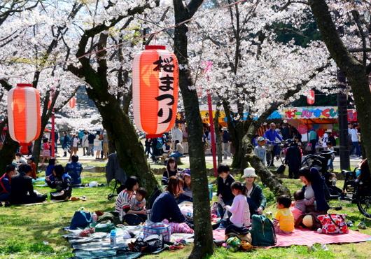 1-15.04.01 和歌山城公園-6.jpg