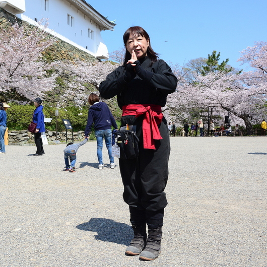 1-15.04.04 忍者-2.jpg