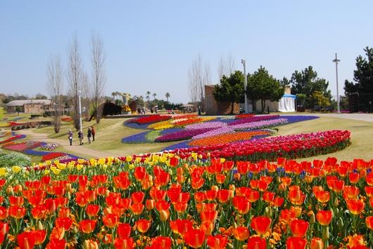 1-15.04.21 明石海峡公園-6.jpg