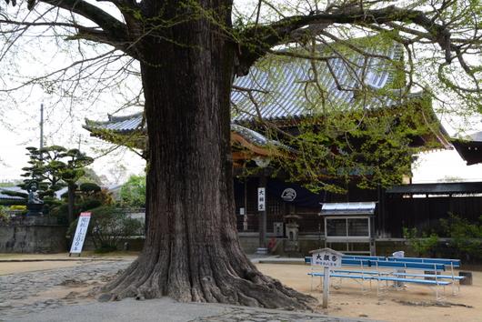 1-15.04.28 5番 地蔵寺-2.jpg