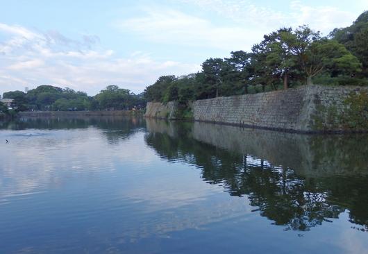 1-15.07.04 早朝散歩-5.jpg