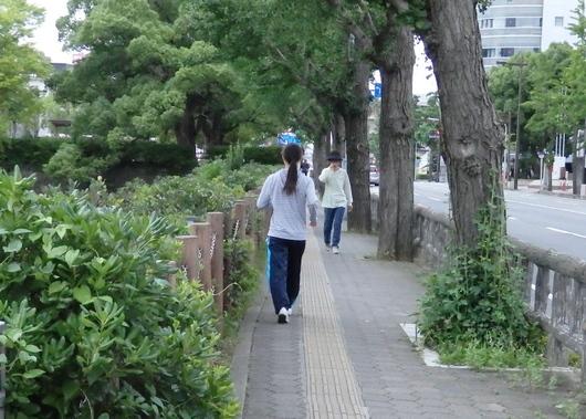 1-15.07.04 早朝散歩-7.jpg