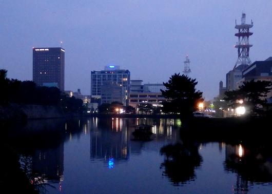 1-15.08.19 早朝散歩-2.jpg