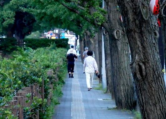 1-15.08.19 早朝散歩-7.jpg