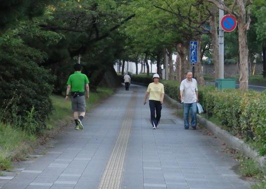 1-15.08.19 早朝散歩-8.jpg