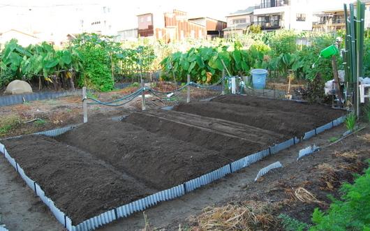 1-15.09.02 家庭菜園-1.jpg