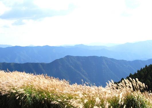 1-15.10.13 生石山のススキ-3.jpg