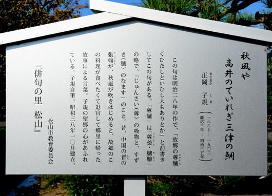 1-15.10.16 48番 西林寺-3.jpg