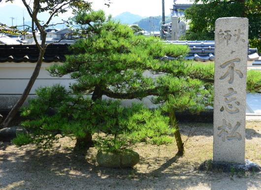 1-15.11.11 56番 泰山寺-2.jpg