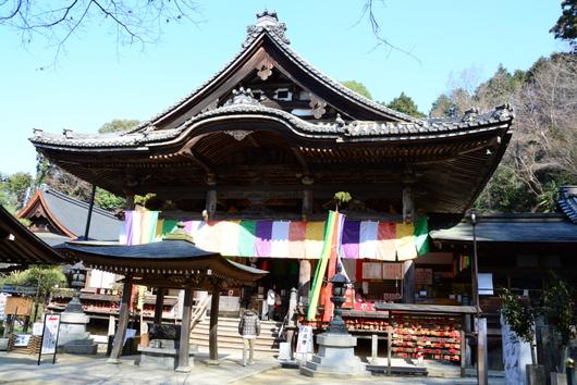 1-16.03.27 7番 岡寺本堂.jpg