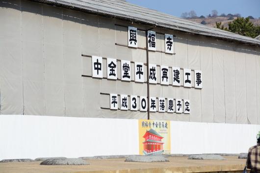 1-16.04.07 9番 南円堂、興福寺中金堂平成再建工事.jpg