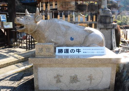 1-16.04.09 10番 三室戸寺宝勝牛.jpg