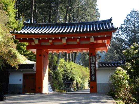 1-16.04.09 10番 三室戸寺山門.jpg