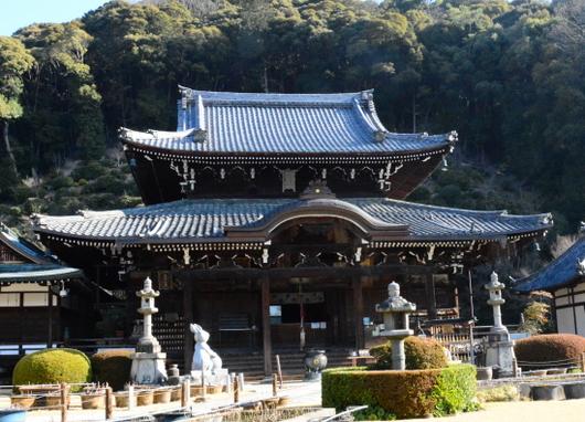 1-16.04.09 10番 三室戸寺本堂.jpg