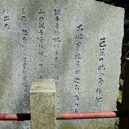 1-16.04.23 12番 岩間寺芭蕉の池-2.jpg