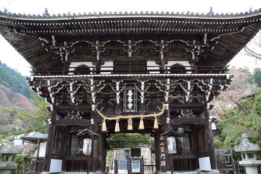 1-16.05.19 20番 善峯寺山門.jpg
