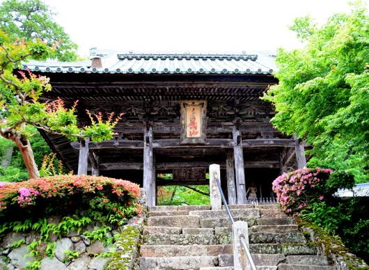 1-16.07.04 29番 松尾寺.仁王門.jpg