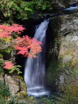 1-16.11.12 大滝.jpg