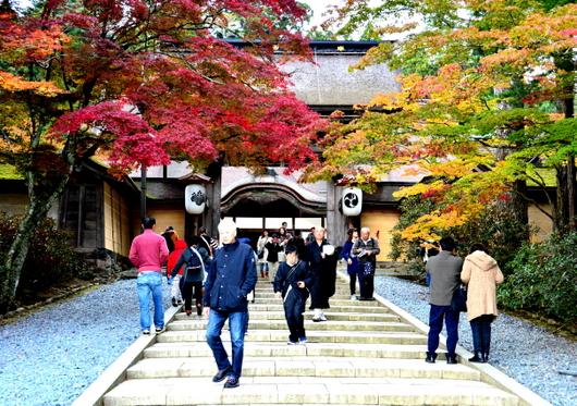 1-16.11.12 金剛峯寺周辺の紅.jpg