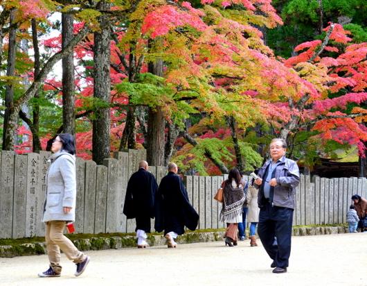 1-16.11.12 金剛峯寺周辺の紅葉-1.jpg