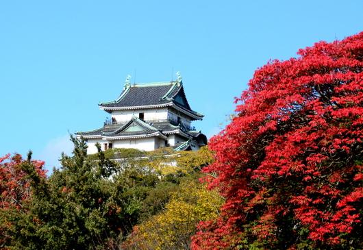 1-16.11.18 和歌山城公園の紅葉-4.jpg