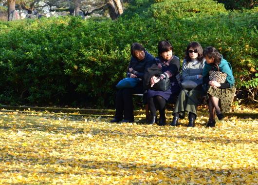 1-16.12.20 銀杏の落ち葉-1.jpg