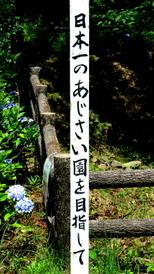 1-17.07.05 森林公園-6.jpg