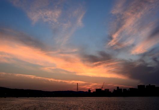 1-17.07.23 早朝散歩-5.jpg