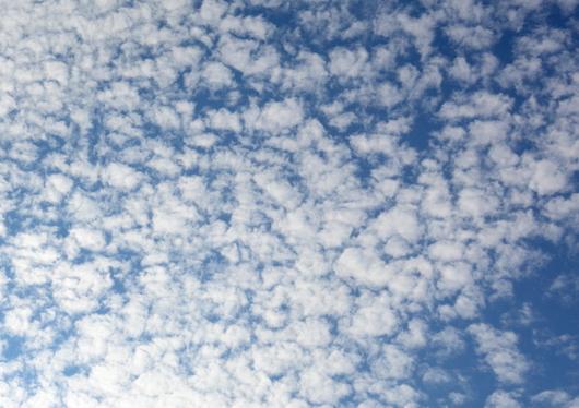 1-17.08.28 巻雲.jpg