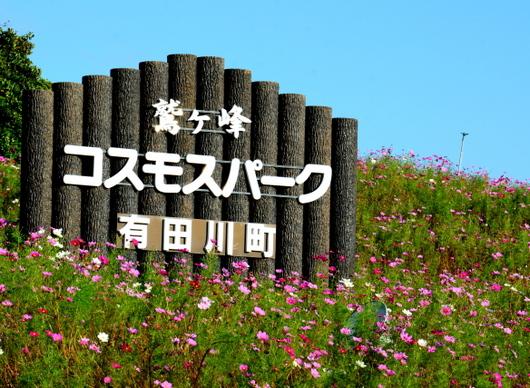 1-17.10.14 鷲ヶ峰コスモパーク-1.jpg