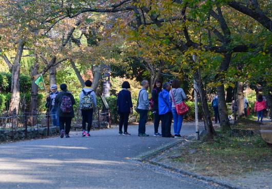 1-17.11.19 城内散歩-2.jpg