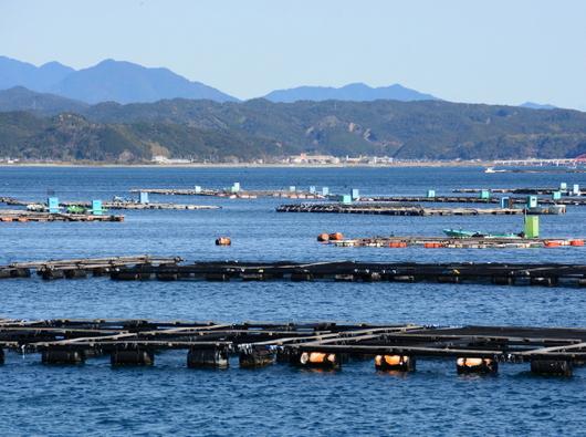 1-18.01.25 養殖筏.jpg