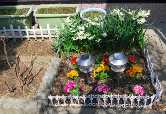 1-18.03.17 自宅の花壇.jpg