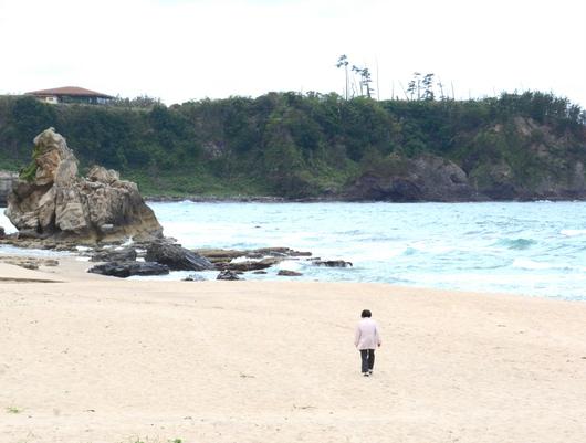 1-18.05.19 琴ヶ浜泣き砂パーク.jpg