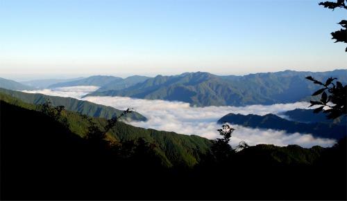 s-08.10.21大台ヶ原の雲海1.jpg