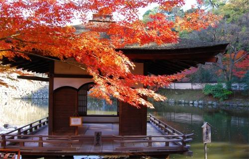 和歌山城・西の丸庭園の紅葉